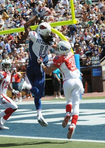 American football(Pictured above 2009 Pro Bowl) Photo: Public Domain