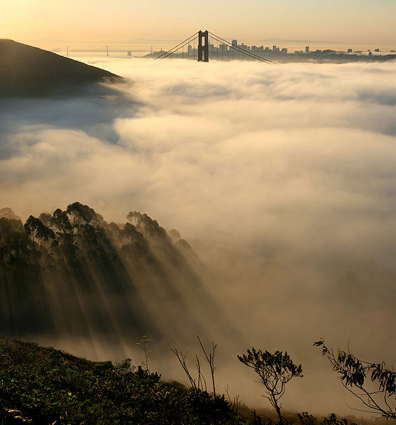 San Francisco Summer Photo: Brocken Inaglory(Wikimedia)
