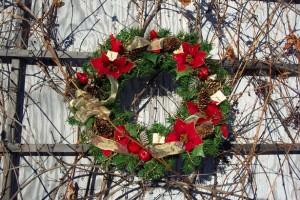 Red Cardinal Pointsetta Wreath Photo: Kim Newberg (publicdomainpictures.net)